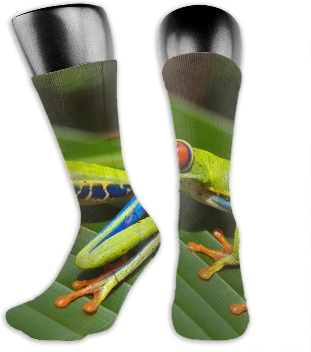 OLGCZM Red Eyed Tree Frog Men Womens Thin High Ankle Casual Socks Fit Outdoor Hiking Trail
