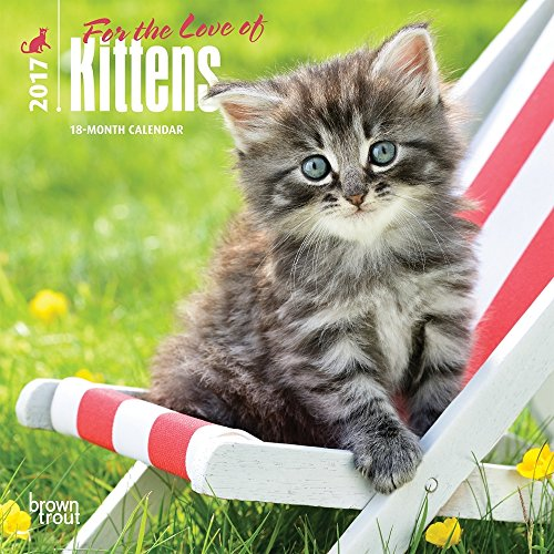 "Kittens, For the Love of 2017 Mini Calendar 7"" x 7"""