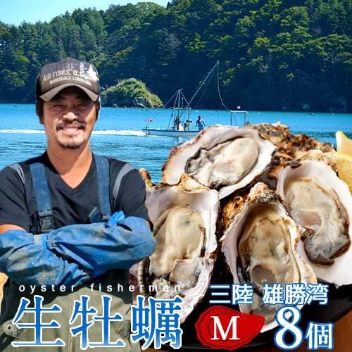 牡蠣 生がき[M]8個 生牡蠣 殻付き 生食用 宮城県産 雄勝湾 漁師直送 生ガキ 焼きカキ BBQバーベキュー