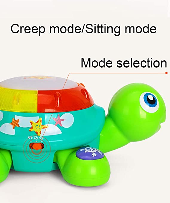 Amazon.com: Colorzonesd Musical Turtle Toy Electronic Toys ...