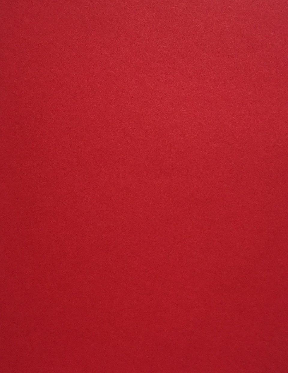 Premium Cover 50 Sheets from Cardstock Warehouse Pink Lemonade Cardstock Paper 8.5 x 11 inch 65 lb