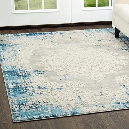 Home Dynamix Palmyra Rene Area Rug 7 9 x10 2 , Distressed Blue