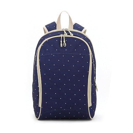 Aivtalk (Set/5pcs) Mochila Maternidad Bolso Maternal Cambiador Backpack para Carro Carrito Cochecito Bebé Mamá Viaje Compras 32cm(L) x 21cm(W) x 45cm(H) ...