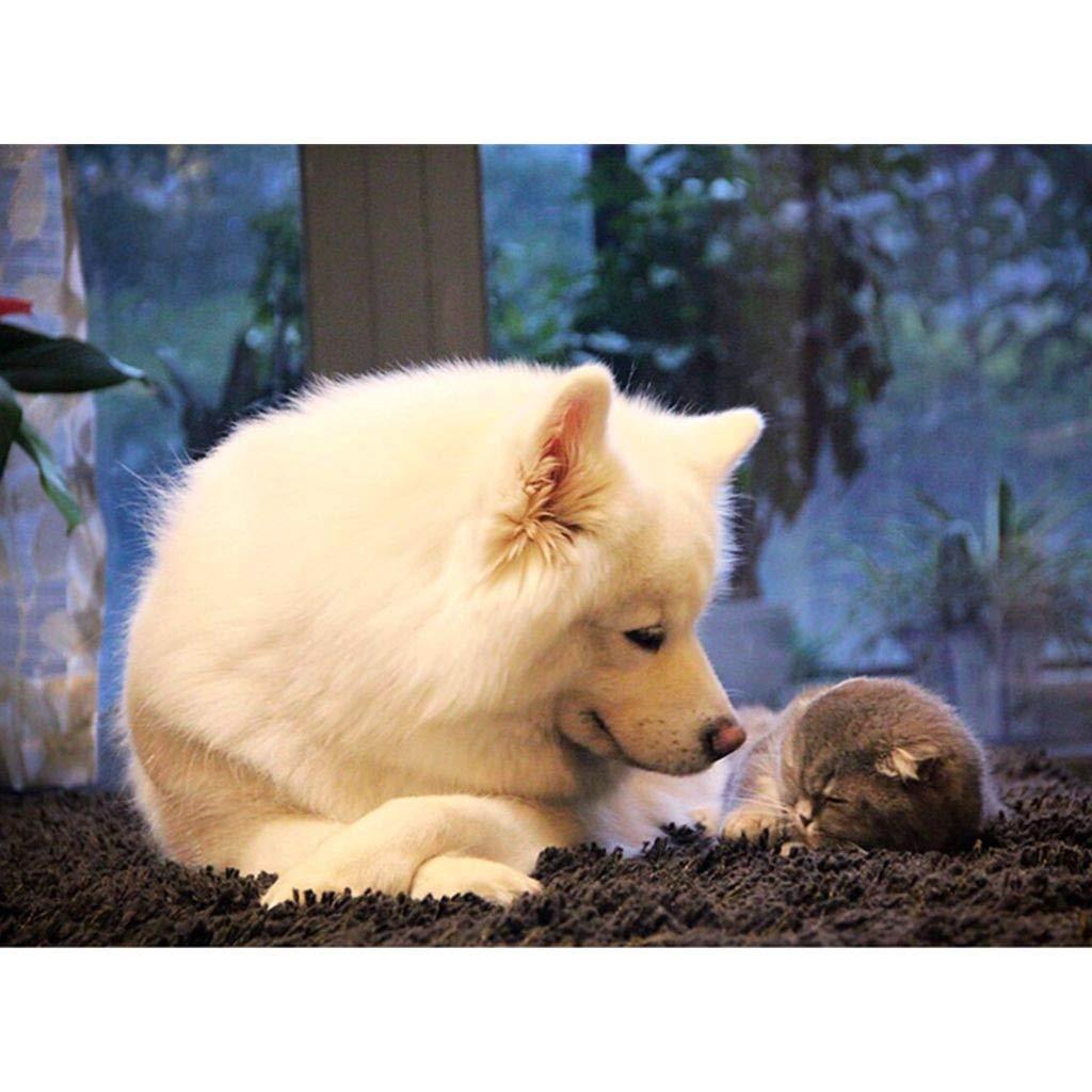 Puzzle House- CutePT Cute Pet Poster, Holzpuzzle, Husky Alaska Dog Portrait, Feinschnitt & Fit Classic 300-1500pc Boxed Toys Spiel für Erwachsene -402 (Farbe   B, größe   1500pc) B07Q9QQJ4V Puzzles Vorzugspreis     | Hohe Qualität und güns