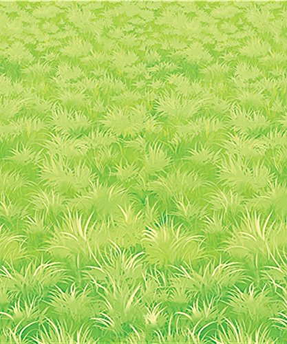 Beistle 52061 Meadow Backdrop, 4-Feet by 30-Feet