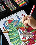 ColorIt Gel Pens For Adult Coloring Books