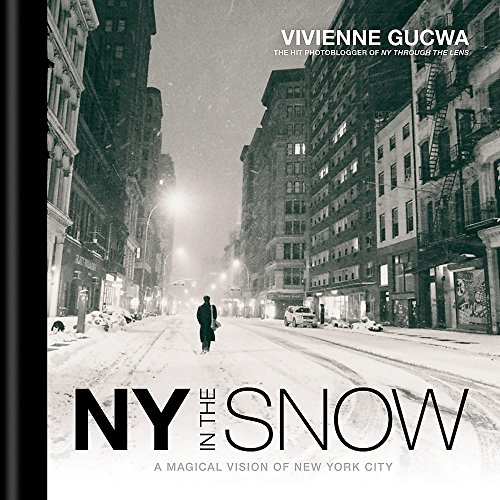 New York in the Snow - York States 5th New Avenue Ny United