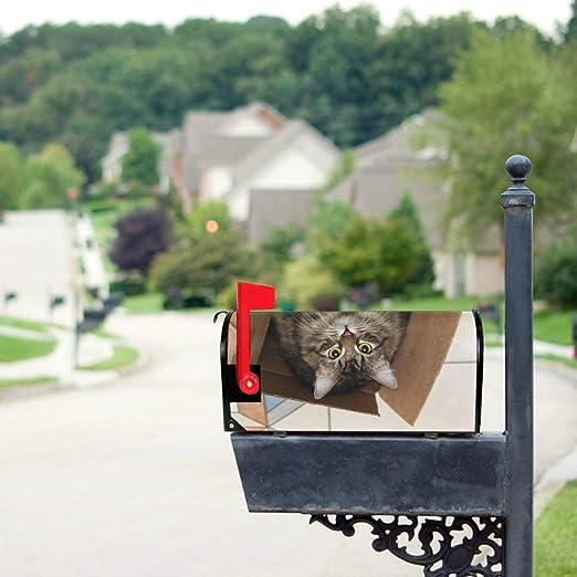 Lindo gato en caja de cartón Tamaño estándar Carta de cubierta magnética original Buzón de correos Cubiertas de buzón de 21 x 18 pulgadas Cubiertas de correo Cubiertas de buzón magnético Verano: