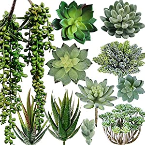 Winlyn 12 Pcs Artificial Fake Mini Succulent Plants Faux Hanging String of Pearls Textured Aloe Echeveria Cactus Succulent Plants Stems Unpotted Floral Arrangements Centerpiece 23