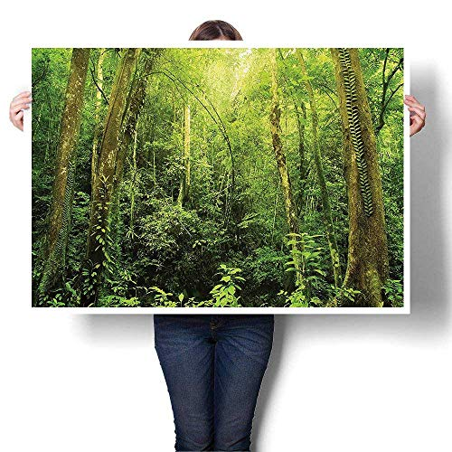 Canvas Wall Art Romantic Oil Painting Tropical Rainforest Landscape Malaysia Asia Green Tree Trunks Uncultivate Prints on Canvas Painting,28