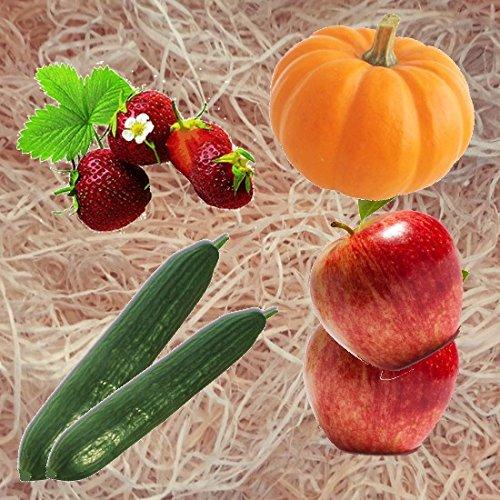 10kg Gartenholzwolle Gemüseholwolle Erdbeerholzwolle * Bio Qualität * PEFC Zertifiziert * sehr hell * aus Deutschem Wald - von unipak mh
