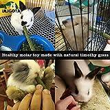 Timothy Hay Sticks Chew Treats & Toy for Rabbit