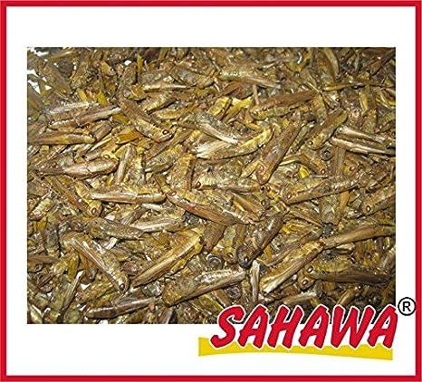 SAHAWA® getrocknete Heuschrecken, Reptilienfutter, Nagerfutter, Igelfutter Igelfutter (1000 ml) SAHAWA®
