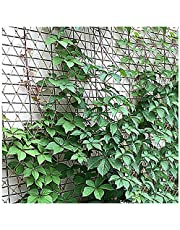 8mm*10cm Outdoor Child Safety Net Climbing Safety Rope Protective Net Hemp Rope Net Decorative Stair Net 1 * 3M Ceiling Decorative Net(Size:2 * 6m(7 * 20ft))