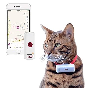 Traceur GPS pour Chat