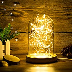 Erosom Glass Dome Lamp Bell Jar Display Dome Bamboo Base String USB LED Bedside Table Lamp with LED Warm Fairy Starry String Lights ideal for Decoration Anywhere.(Warm White)