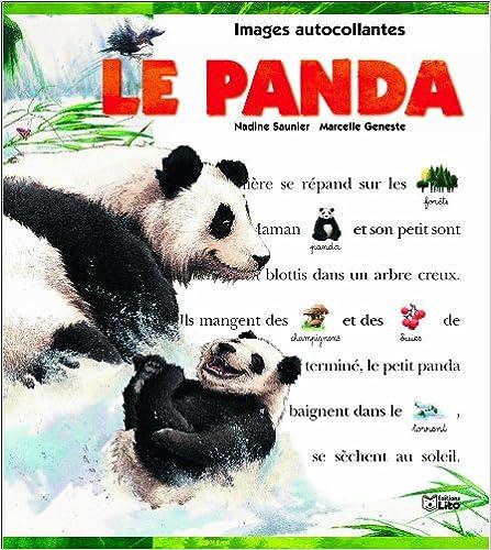 Télécharger en ligne Le panda ( périmé ) pdf