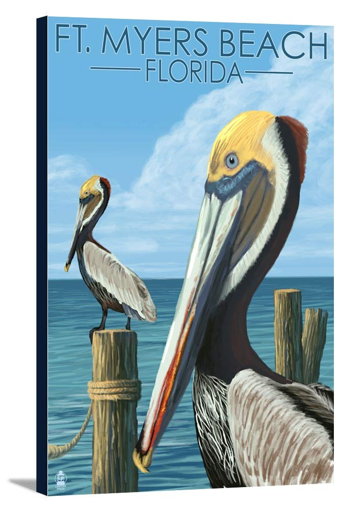FT。マイヤーズビーチ、フロリダ州 – Pelicans 12 x 18 Gallery Canvas LANT-3P-SC-41826-12x18 B018P4XF3Q  12 x 18 Gallery Canvas