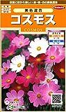 サカタのタネ 実咲花7187 コスモス 美色混合 00907187 10袋セット