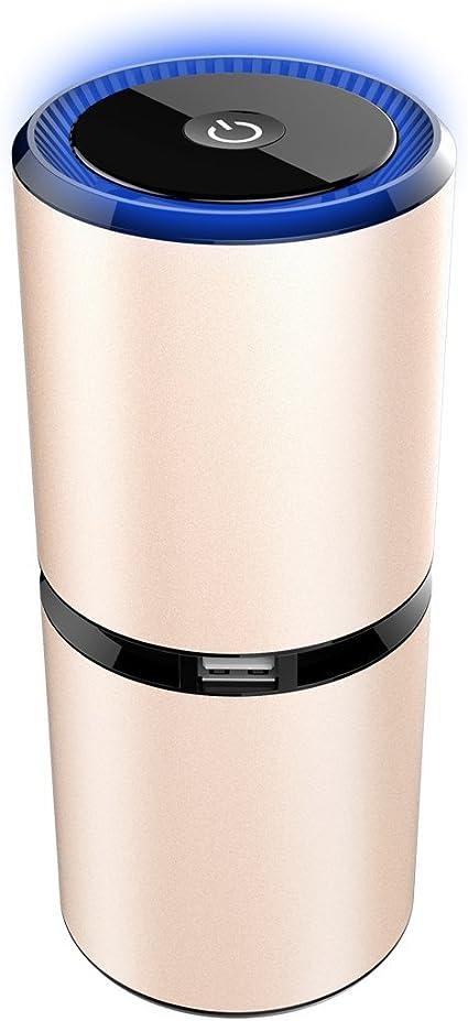 Amazon.es: Purificador de aire para, ambientador de coche ...