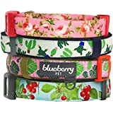 Blueberry Pet 5/8-Inch Spring Scent Inspired Floral Rose Basic Polyester Nylon Dog Collar, Small, Baby Pink