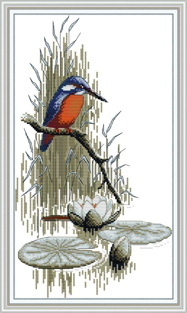 Birdcage and Flowers 16.1/×20.1 Maydear Cross Stitch Kits Stamped Full Range of Embroidery Starter Kits for Beginners DIY 11CT 3 Strands inch