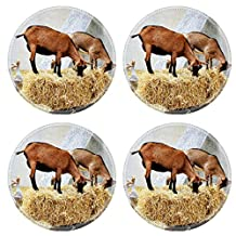 MSD Round Coasters IMAGE 20407501 Animals in the farm goats and geeses