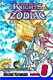 Knights of the Zodiac (Saint Seiya), Vol. 8