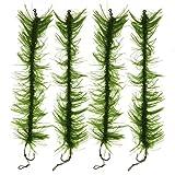 JSHANMEI 10pcs Green Weed Hair Rigs Carp Fishing - Best Reviews Guide