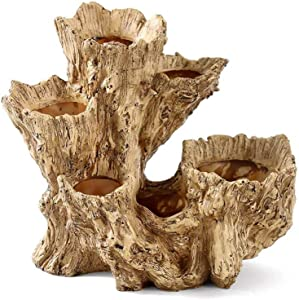 Whiidoom Driftwood Succulent Planters Decoration Plants Pots Containers for Cactus Flower (Style 3)