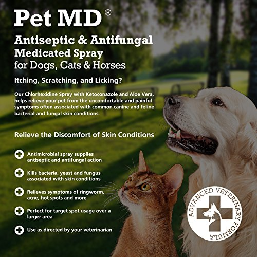 Image of Pet MD Antiseptic and Antifungal Medicated Spray for Dogs, Cats and Horses with Chlorhexidine, Ketoconazole, Essential Fatty Acids, Aloe and Vitamin E - 8 oz