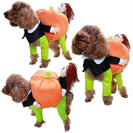 Kết quả hình ảnh cho disfraces de calabaza para perros