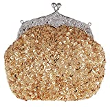 ilishop Women's Fully Sequined Mesh Beaded Antique Style Wedding Evening Formal Cocktail Clutch Purse (Gold)