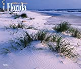 Florida, Wild & Scenic 2018 14 x 12 Inch Monthly Deluxe Wall Calendar, USA United States of America Southeast State Nature