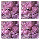 Liili Natural Rubber Square Coasters IMAGE ID: 1943489 A pink sculpin sits on a sponge waiting to catch its prey Note how the pink fish is on a pink surface This is a cry