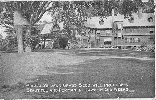 Baltimore Maryland Bolgiano Lawn Grass Seed Ad Antique Postcard K87480