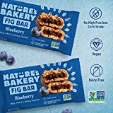 Nature's Bakery Whole Wheat Fig Bars, Blueberry, 1- 12 Count Box of 2 oz Twin Packs (12 Packs), Vegan Snacks, Non-GMO