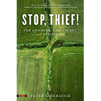 Stop, Thief!: The Commons, Enclosures, And Resistance (Spectre) (English Edition)