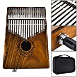 Labyrinen 17 Keys EQ kalimba, Solid Acacia Thumb Piano with English & Chinese Song Book and Tune Hammer Link Speaker Electric Pickup with Bag Cable