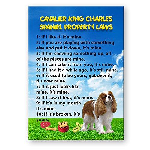 Cavalier King Charles Property Laws Fridge Magnet No 2 Funny - Cavalier Magnet Charles King