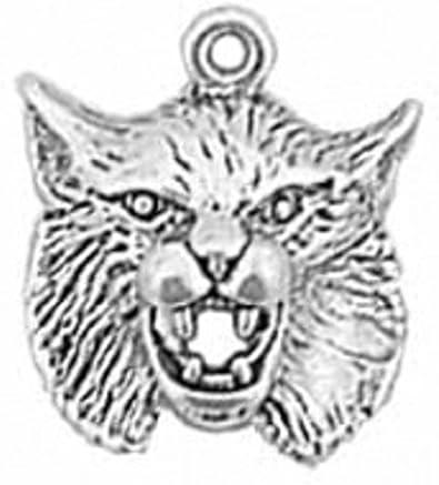 Bobcats mascot  team charm