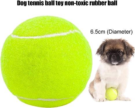 zNLIgHT - Pelota de Tenis para Perro de Goma no tóxica y Duradera ...