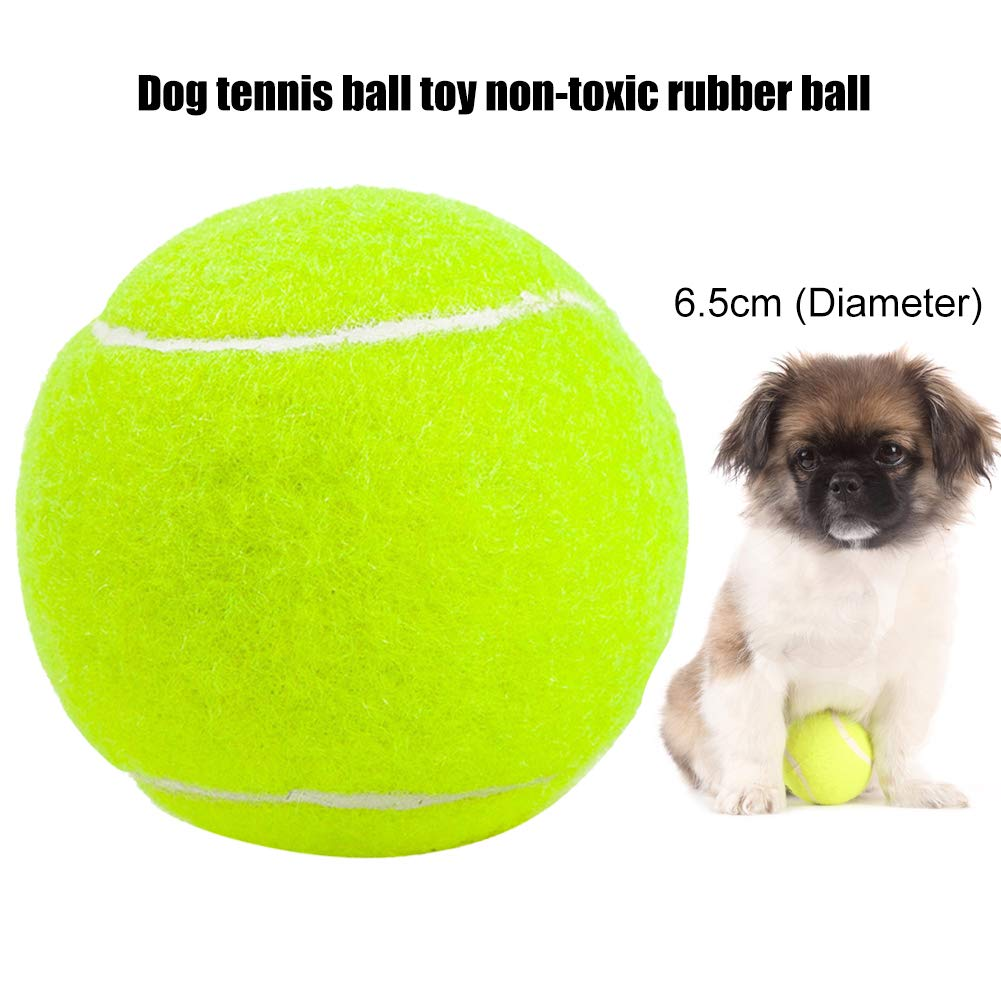Ordertown Pelota de Tenis para Perro, Juguete para Perros y ...