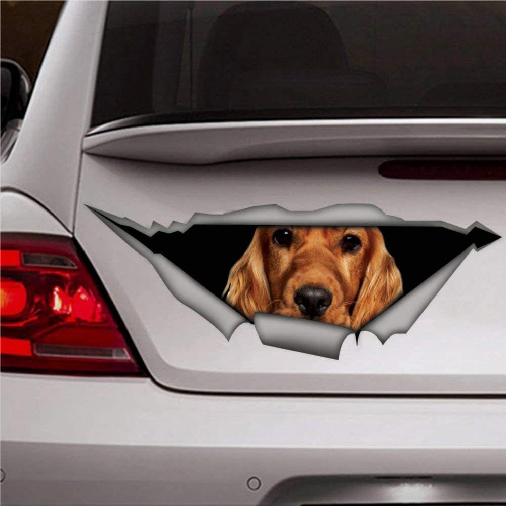 DONL9BAUER Spaniel Dog Car Stickers Vinyl Auto Scratch Cover 3D Sticker Car Decal for Laptop Travel Case Tumbler Door Window Bumper Luggage Idea