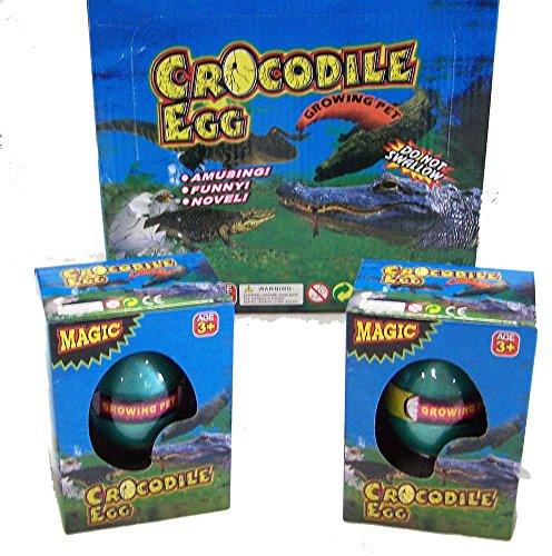 12 Eggs ( 1 Dozen Bulk LOT ) - Novelty Growing Pet CROCODILE Hatching Eggs (Chicken Croc)