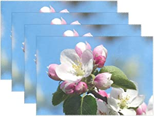 Promini Heat-Resistant Placemats, Apple Blossom Apple Tree Blossom Bloom White Pink Washable Polyester Table Mats Non Slip Washable Placemats for Kitchen Dining Room Set of 4