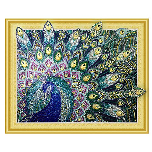 - HuaCan Diamond Painting Kits 5D Peacock Drills Special-Shaped Crystal Rhinestone Animal Bird Pictures Arts Craft for Home Wall Decor for Adults Kids 40x50cm/15.7x19.6in