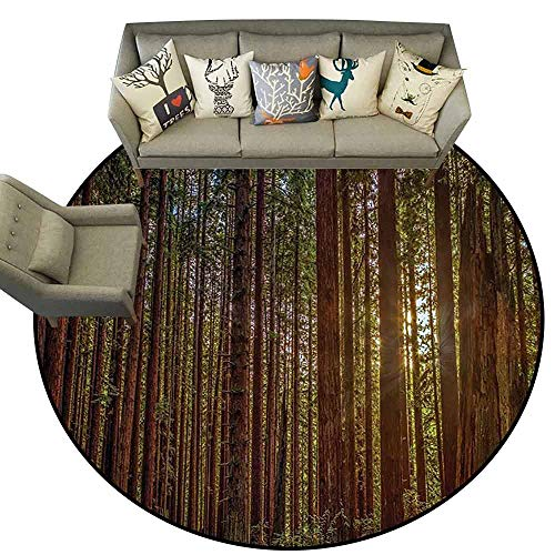 - Round Small Door MatCalifornia Tree Nature Redwood Forest in California and Sunset Picture Print Living Dinning Room and Bedroom Rugs D71 Green and Brown
