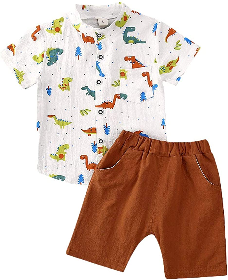 Summer Short Sleeve Cartoon Dinosaur Pattern T-Shirt Top+Short Pants 2Pcs Outfits Set Hailouhai Toddler Baby Cute Boy Clothes