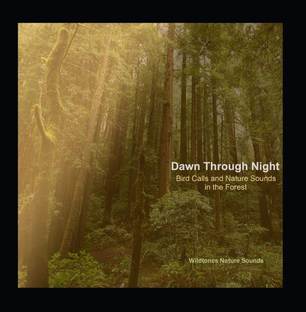 Dawn Through Night: Bird Calls and Nature Sounds in the Forest